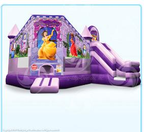 Click here to check out our Princess Palace Club jumper rental.